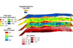 Crop and Soil Mapping Boosts Potential for Increased Yields