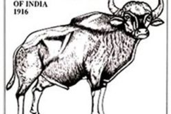GIS-enabled Complete List of Indian Fauna Soon: Zoological Survey of India
