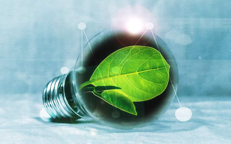 The Role of Government in Energy Conservation