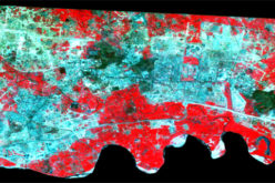 Spatiotemporal Analysis of Noida Using Remote Sensing and GIS Approaches