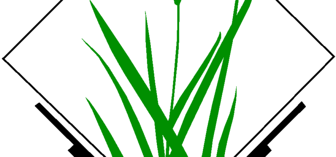 GRASS GIS 7.0.0 beta 1 is Released