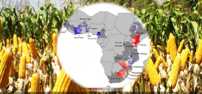 Water, Water — Not Everywhere: Mapping Water Trends for African Maize
