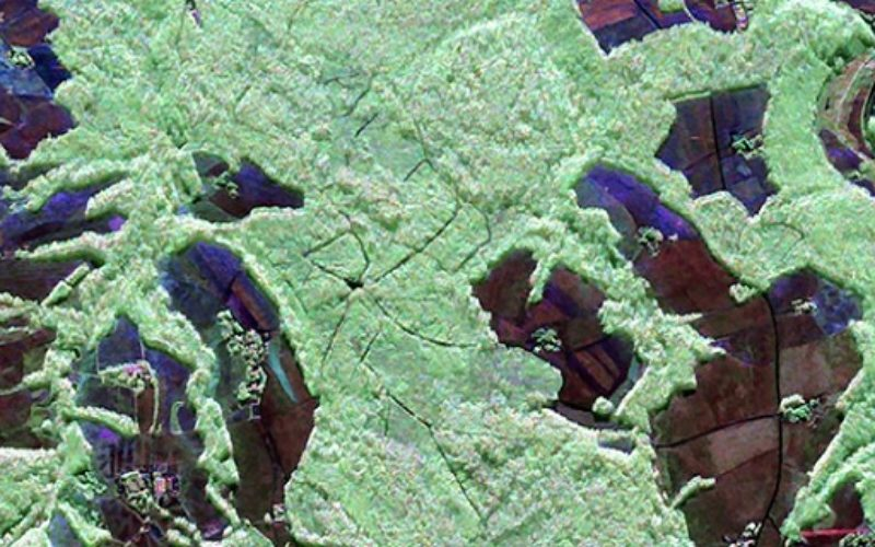 3D Measurements of Forest Areas