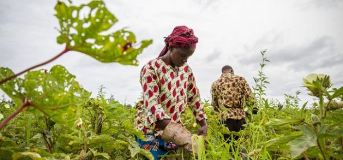 Sustainable Agriculture Development using Geospatial Technologies