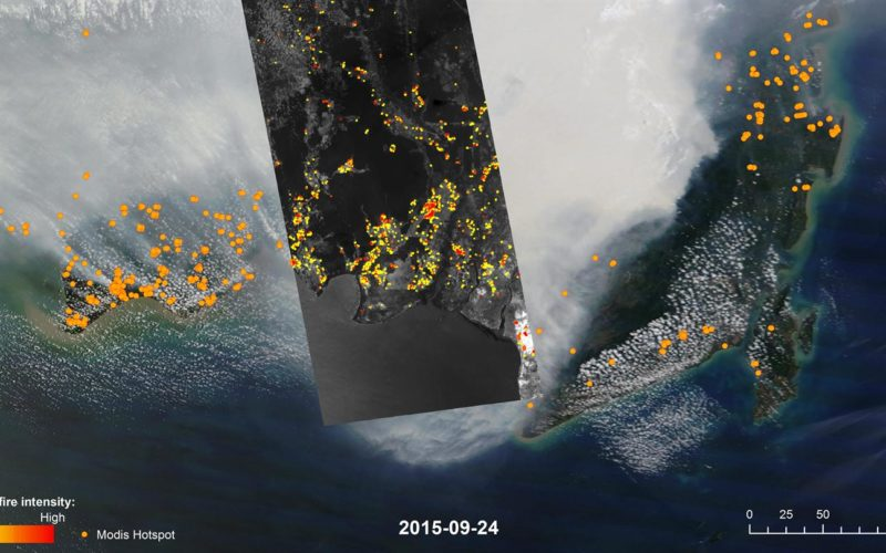 DLR Satellite TET-1 Delivers Detailed Images of the Fires in Indonesia