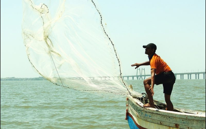 Blue Revolution: GIS to Boost Fisheries Sector