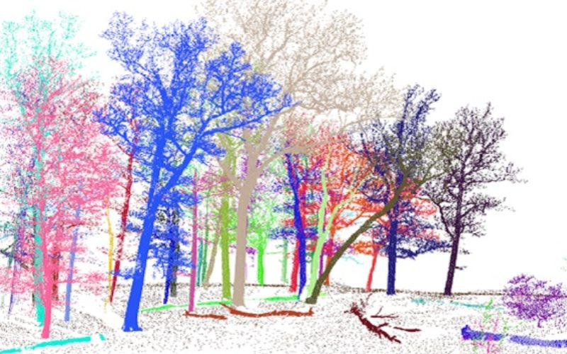 3D Forest – Forest LiDAR Data Processing Tool