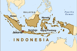Indonesian Peat Prize Announces 1 Million US Dollar Competition Winner
