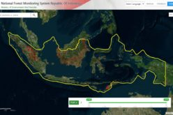 Indonesia Launches Geospatial Portal for Forest Monitoring and Protection