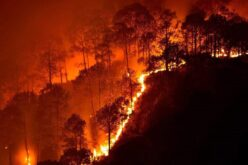 How Google is Using Satellite Imagery for Mapping Wildfires?