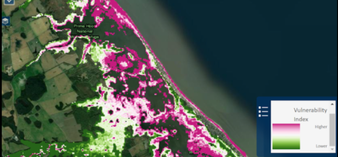 USGS Developed High-Resolution Imagery of Coastal Wetlands to Identify Vulnerable Marshes across the US